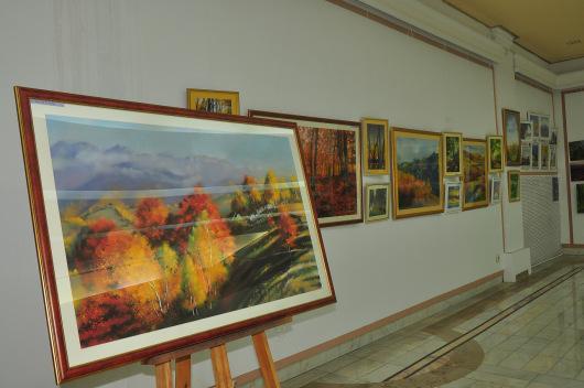 expo-adrian-stoenica-cmn-ian-2015